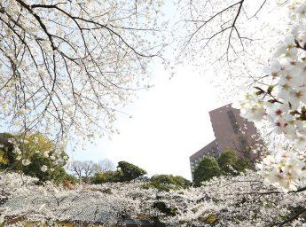 ホテル椿山荘東京 スプリングパーティプラン